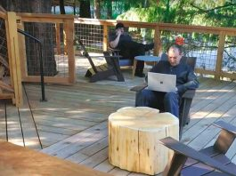 Microsoft Employees Can Now Enjoy Working at Tree-Houses in Their Washington Campus