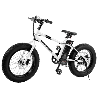 SWAGTRON EB-6Youth Electric Fat Bike